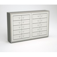 "5""D - 20 Door, Cell Phone Cabinet with Wood Trim"